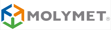 Quantrix Delivers Dynamic Forecasting to Molymet